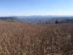 View of the Tennessee Smokey Mountains